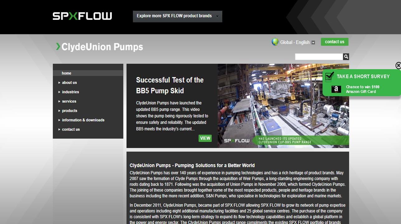CLYDEUNION Pumps